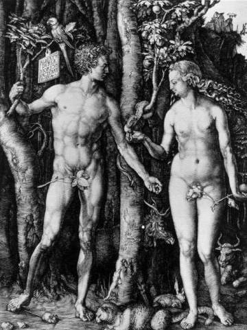 Adam and Eve (The Fall of Man) - Albrecht Durer