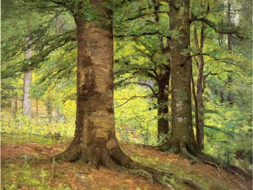Beech Trees - Theodore Clement Steele