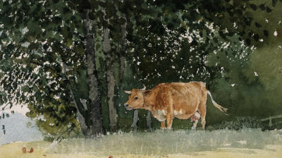 Cow in Pasture - Winslow Homer