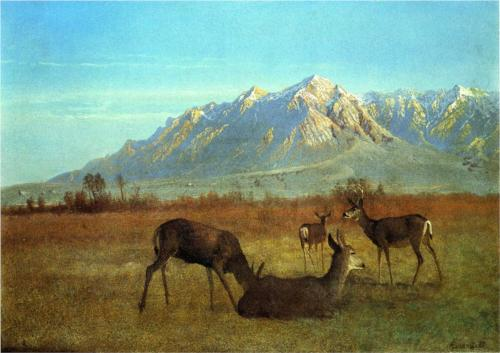 Deer in a Mountain Home - Albert Bierstadt