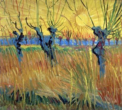 Pollarded Willows with Setting Sun - Vincent van Gogh