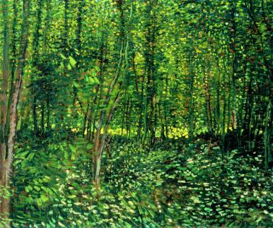 Woods and Undergrowth - Vincent van Gogh